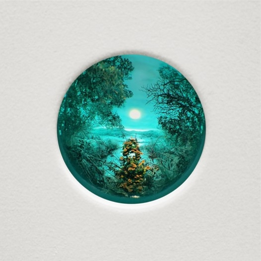 Blue_Green_Nocturne_enlarged